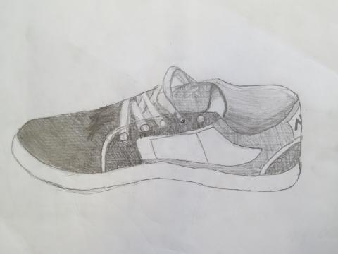 Naturstudium Schuh 1