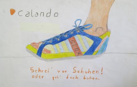 Schuh Carlos